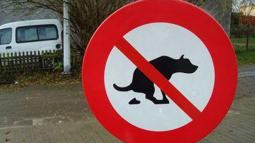 Belgique: des trottoirs encore trop souvent jonchés de déjections canines