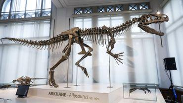 Près de la moitié des Belges vont au musée moins d'une fois par an