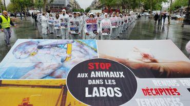 Manifestation contre la vivisection à Paris en avril 2014