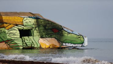 """Le dragon """"Shenron"""" de Dragon Ball débarque sur une plage de Normandie"""