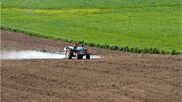 Quarante pesticides découverts à l'intérieur d'une école