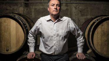 France: un viticulteur bio condamné pour avoir refusé de traiter ses vignes
