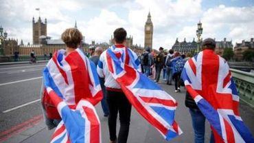 """Brexit - Londres pourrait ne """"jamais"""" déclencher sa sortie de l'UE, selon un diplomate"""