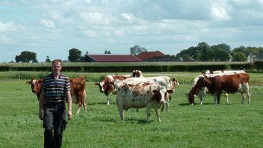 Gerar Hartveld, éleveur laitier, dans sa ferme de Nieuwveen aux Pays-Bas, le 4 août 2017