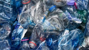 Ecologie: recycler le plastique, ce n'est pas si automatique