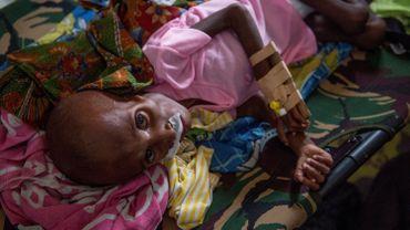 L'insécurité alimentaire menaçait 124 millions de personnes dans le monde en 2017