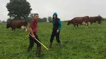 Benoît Darimont et Mélanie Malzahn, éleveurs de vaches rouge-pie de l'est