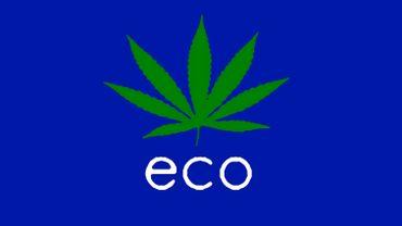 Le Drole D Effet Secondaire De La Legalisation Du Cannabis