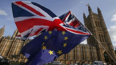 Le Royaume-Uni a le droit de décider seul de renoncer au Brexit