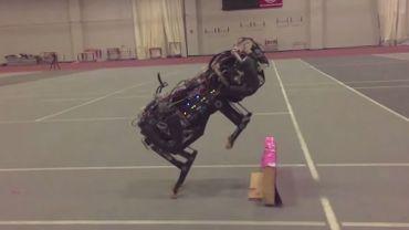 Google développe un robot qui fait des bonds