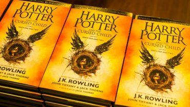 """""""Harry Potter und das Verwunschene Kind"""" sera programmé au Mehr!-Theater am Großmarkt d'Hambourg au printemps 2020."""