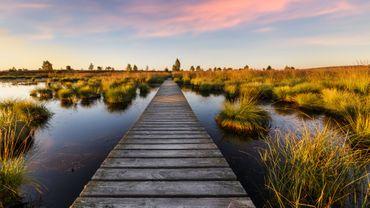 Excursions en Belgique : les plus beaux panoramas à voir en promenade