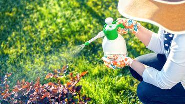 """Relevez le """" Challenge sans pesticides """", c'est possible !"""