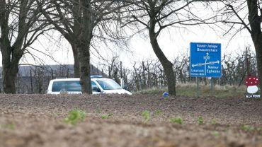 Intempéries: des voiries encombrées par des arbres en Brabant wallon