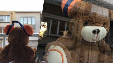 Mettez vos teddy Viva for Life à la fenêtre!