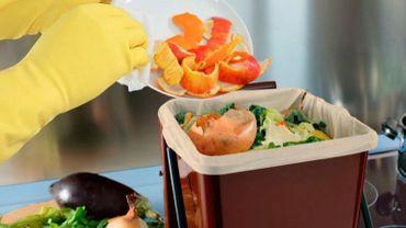 Compost, containers enterrés dans le sol, poubelles à puce, sacs spécifiques... Les solutions pour trier et recycler ses déchets organiques sont nombreuses.