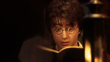 La suite farfelue des aventures d'Harry Potter !