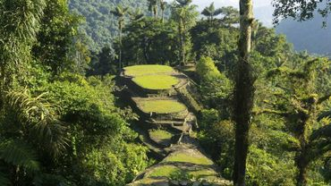 Envie de visiter la Colombie? Voici votre voyage en 7 étapes...