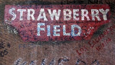 Strawberry Field ouvre ses portes!
