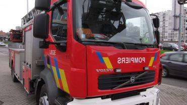Au total, une trentaine de pompiers sont intervenus pour maîtriser l'incendie (illustration).