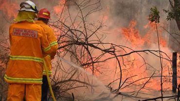 Au moins deux morts liés aux dizaines de feux dans l'est de l'Australie