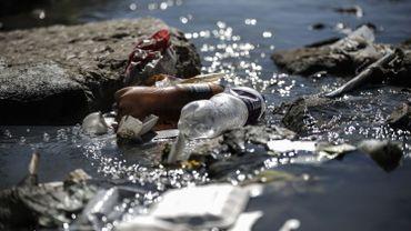 World Cleanup Day: près de 300 actions locales prévues ce samedi en Belgique