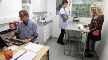 Certains de ceux qui ont raté l'examen d'entrée en médecine veulent se rabattre sur les sciences vétérinaires, mais ils n'ont pas prévu de passer cet été un test aux études de santé.
