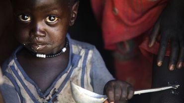 """La participation du Canada """"aidera à apporter une aide vitale aux populations touchées par la crise dans ces pays"""" et plus particulièrement les enfants, a indiqué le ministère."""