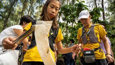 Lilly en pleine collecte de déchets par une ONG en Thaïlande, le 25 août 2019