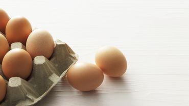 Tout savoir sur l'œuf