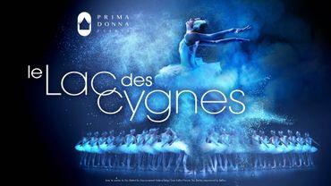 L'affiche du Lac des Cygnes