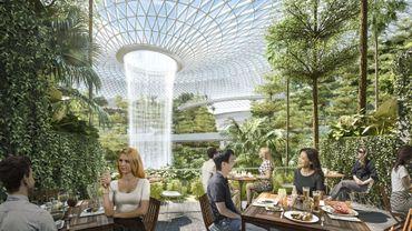 Singapour : l'aéroport Changi une nouvelle fois élu numéro 1 mondial