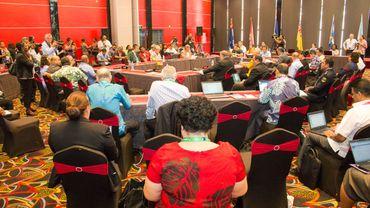 Le  Climate Vulnerable Forum (CVF).