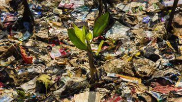 Interpol constate une hausse de l'activité criminelle dans le traitement des déchets.