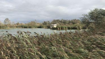 Un des bassins de la réserve naturelle du Haut-Geer