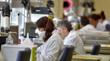 La Belgique, légèrement au dessus de la moyenne européenne avec 43% de femmes scientifiques et ingénieurs.