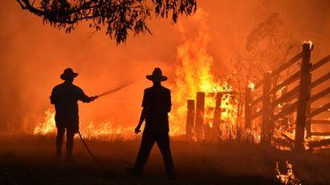 Des habitants tentent d'éteindre un feu de broussailles près de Taree, à 350 km au nord de Sydney, le 12 novembre 2019