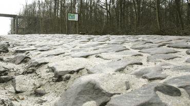 Les pavés de la Tranchée d'Arenberg