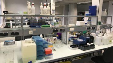 Un des laboratoires d'Imcyse