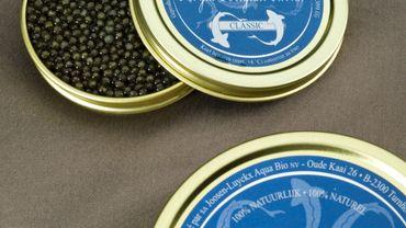 En décembre 2001, le premier caviar belge était introduit sur le marché. Le Royal Belgian Caviar faisait son apparition dans le monde de l'or noir