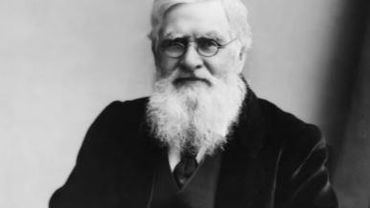 Alfred Wallace, le co-inventeur de la théorie de l'évolution