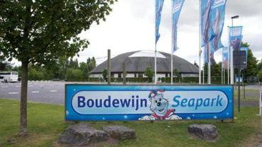 L'association Bite Back proteste contre le delphinarium du Boudewijn Seapark