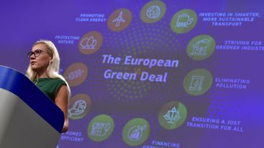 Kadri Simson, commissaire en charge de l'Energie, a indiqué que 720 millions d'euros vont être injectés dans ce projet d'intérêt stratégique pour l'Union.