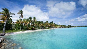 10 jours en Guadeloupe : on fait quoi?