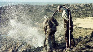 """""""Ça collait partout"""": Il y a 20 ans l'Erika sombrait au large du Finistère et causait une marée noire"""