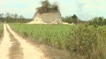 Une pyramide détruire pour construire une route au Belize