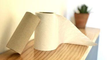 Coronavirus: la production de papier toilette devient un secteur prioritaire
