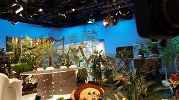 le lion est mort ce soir dans le studio du Jardin Extraordinaire