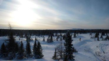 Kuujjuarapik, le village de l'Arctique où dorment désormais les ours