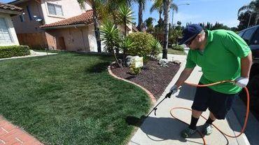 Un employé de l'entreprise californienne Lawnlift en train de peindre une pelouse de San Diego en vert